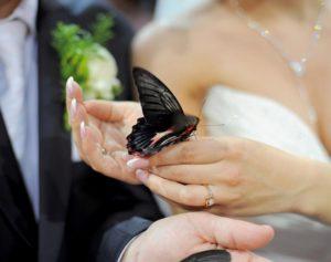 Miss Marryme Team Zeremonie